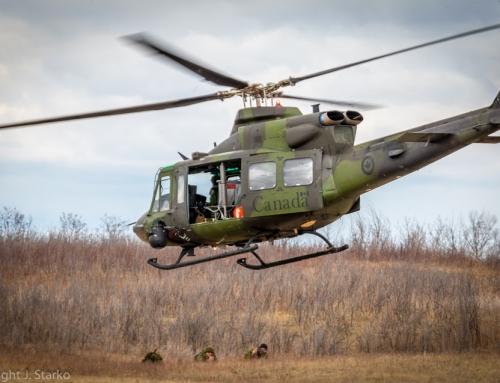 Air Mobile and Platoon Ambush – April 2015